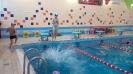 бассейн 2017 год
