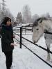 Катание на лошадях_8